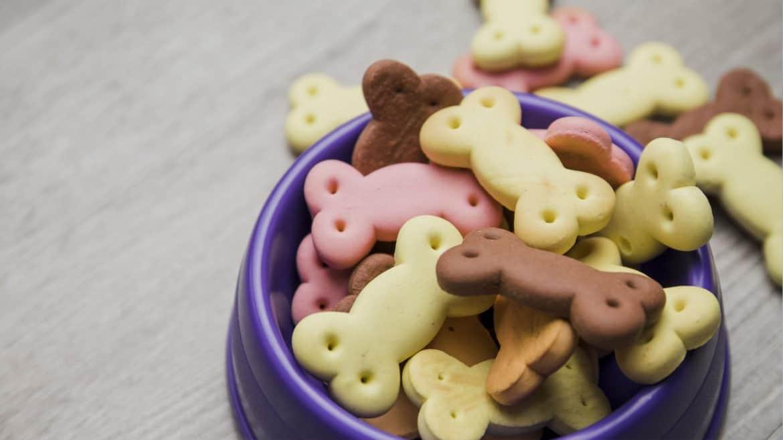 Biscotti alla frutta per cane